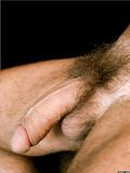 Big Hairy Dicks